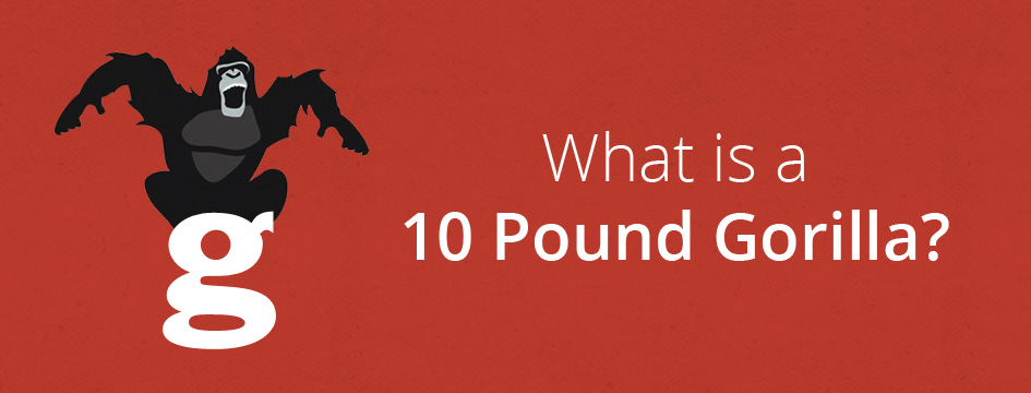 "How the Name ""10 Pound Gorilla"" Came to Be"