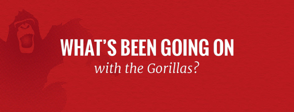 What Has 10 Pound Gorilla Been Up To & Why It Can Help You Grow